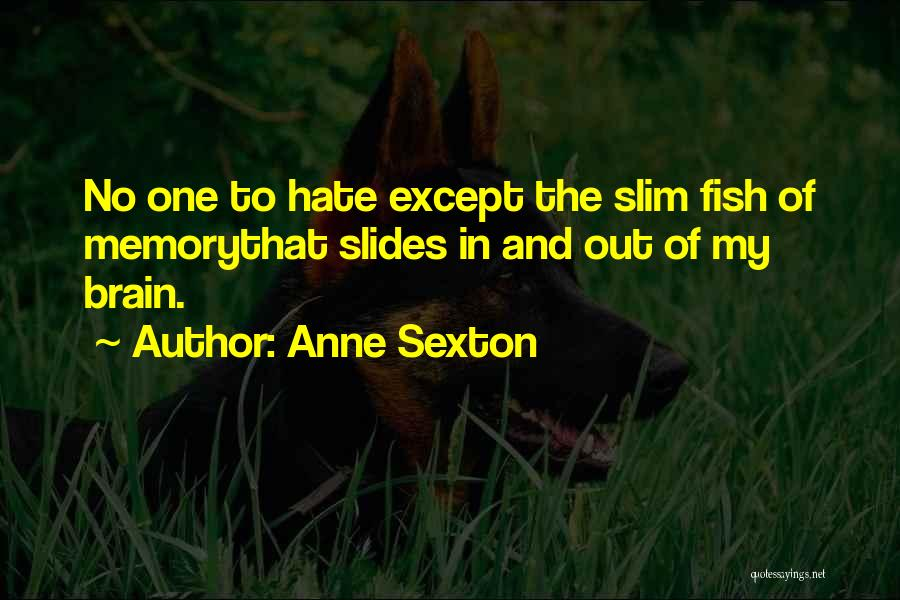 Memory And The Brain Quotes By Anne Sexton