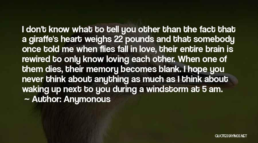 Memory And The Brain Quotes By Anymonous