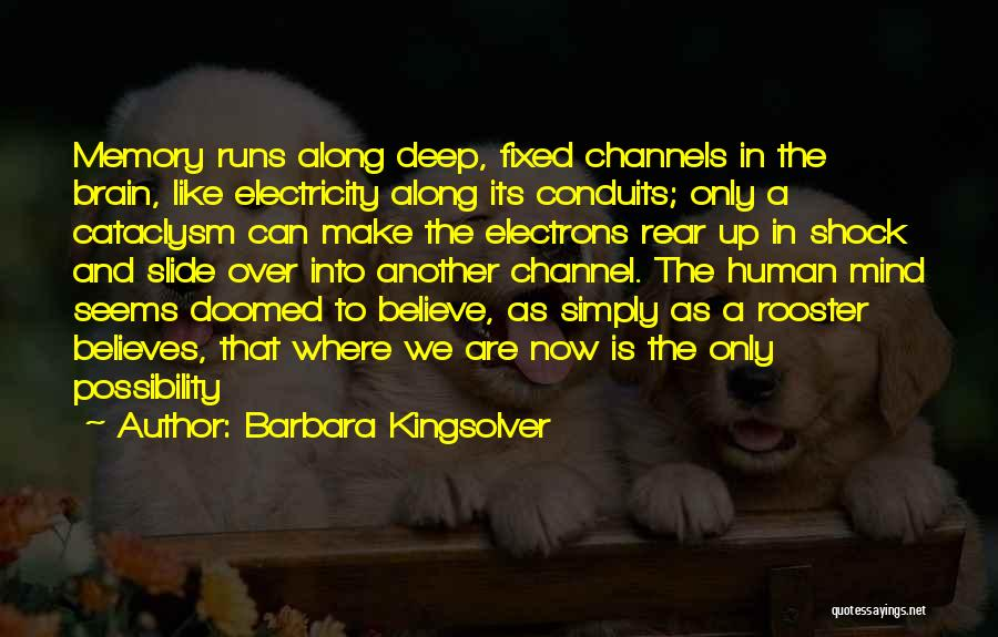 Memory And The Brain Quotes By Barbara Kingsolver