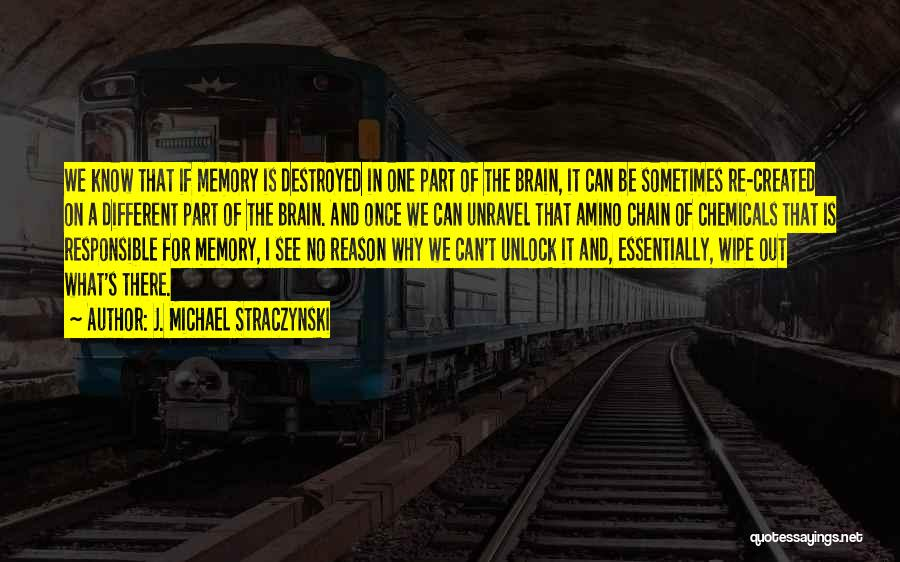 Memory And The Brain Quotes By J. Michael Straczynski