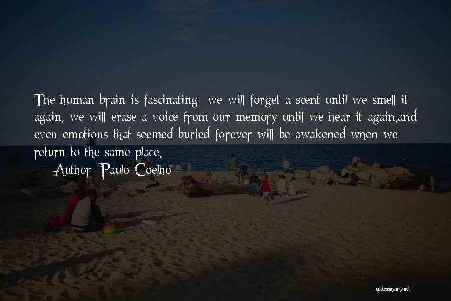 Memory And The Brain Quotes By Paulo Coelho