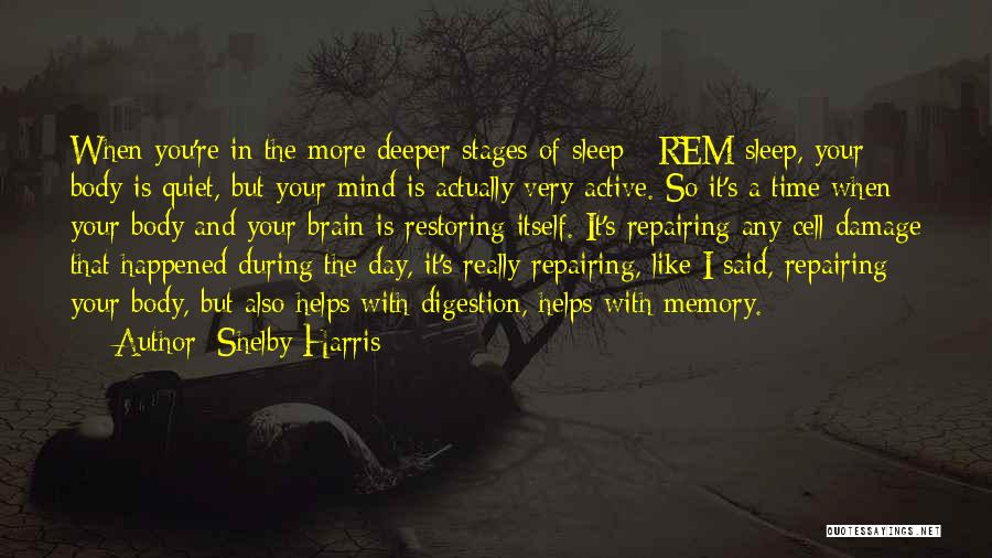 Memory And The Brain Quotes By Shelby Harris