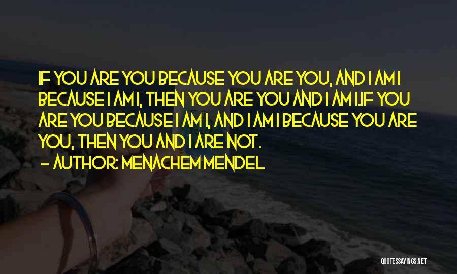 Mendel Quotes By Menachem Mendel