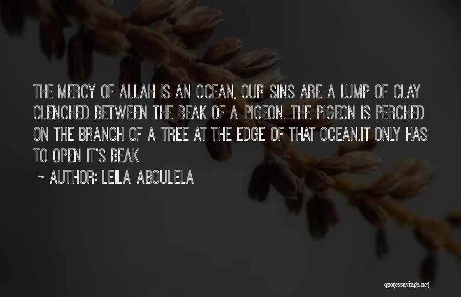 Mercy Of Allah Quotes By Leila Aboulela