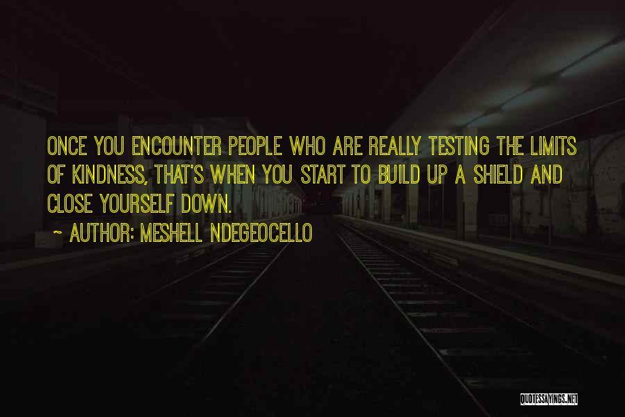 Meshell Ndegeocello Quotes 1144972