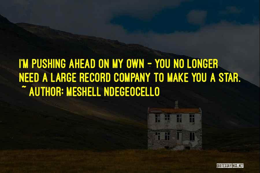 Meshell Ndegeocello Quotes 982578