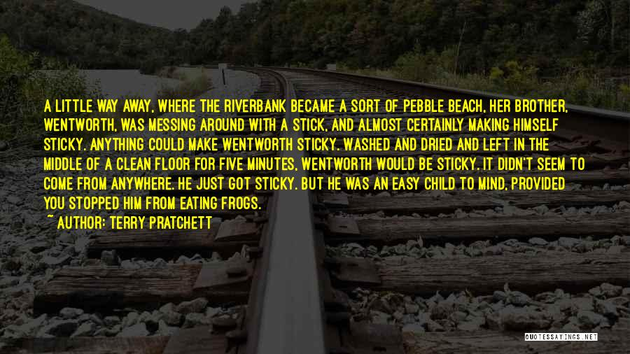 Messing Me Around Quotes By Terry Pratchett
