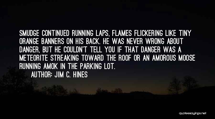 Meteorite Quotes By Jim C. Hines