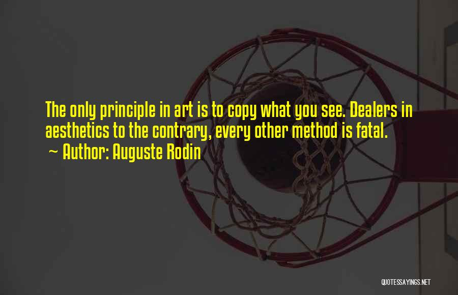 Methodology Quotes By Auguste Rodin