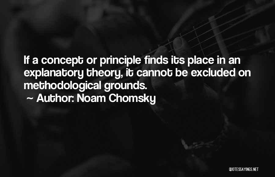Methodology Quotes By Noam Chomsky