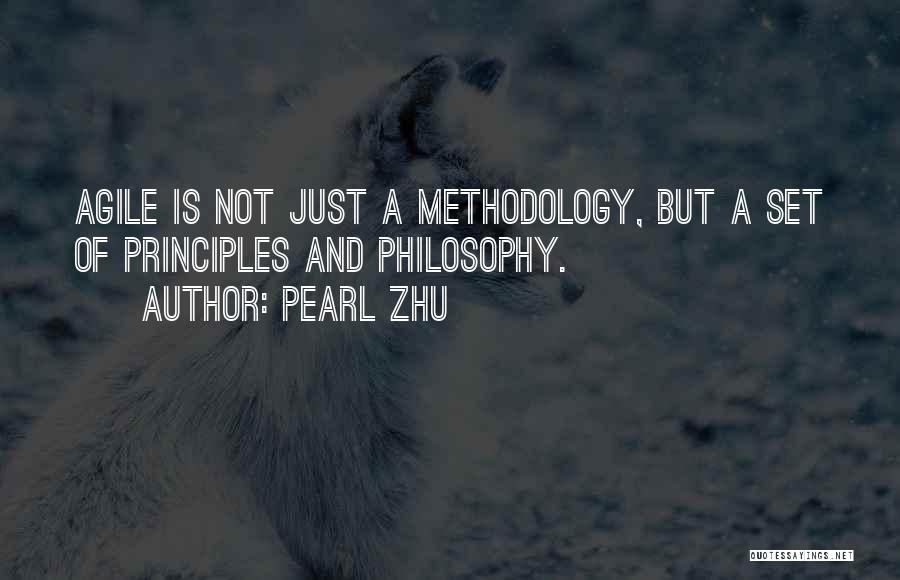 Methodology Quotes By Pearl Zhu