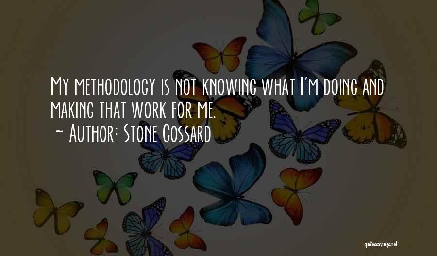 Methodology Quotes By Stone Gossard