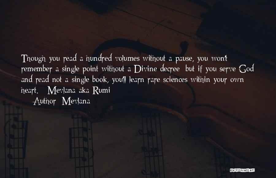 Mevlana Rumi Quotes By Mevlana