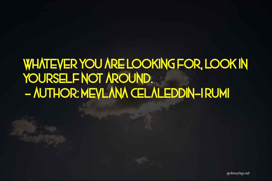Mevlana Rumi Quotes By Mevlana Celaleddin-i Rumi