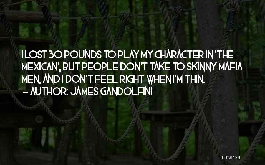Mexican Quotes By James Gandolfini