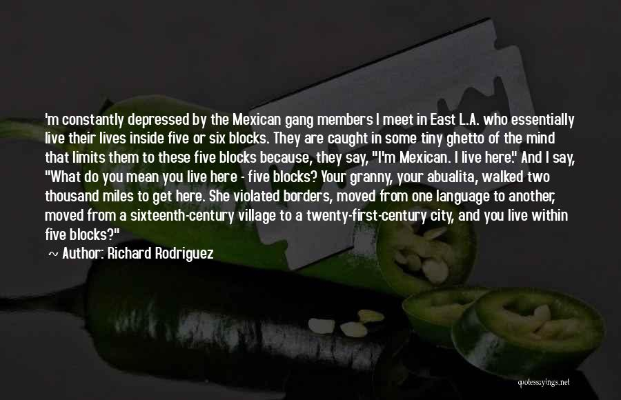Mexican Quotes By Richard Rodriguez