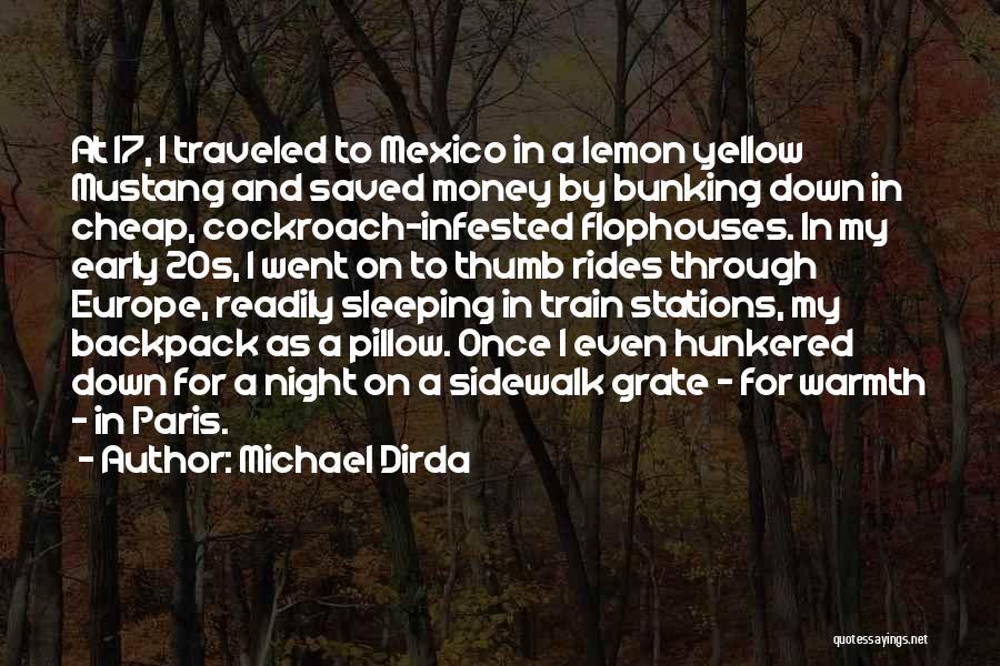 Michael Dirda Quotes 1665611