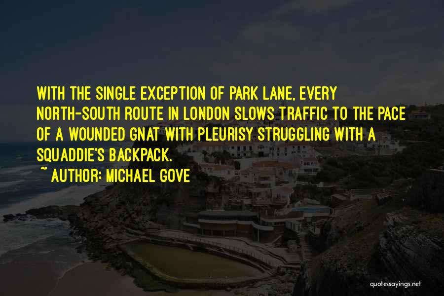 Michael Gove Quotes 169333