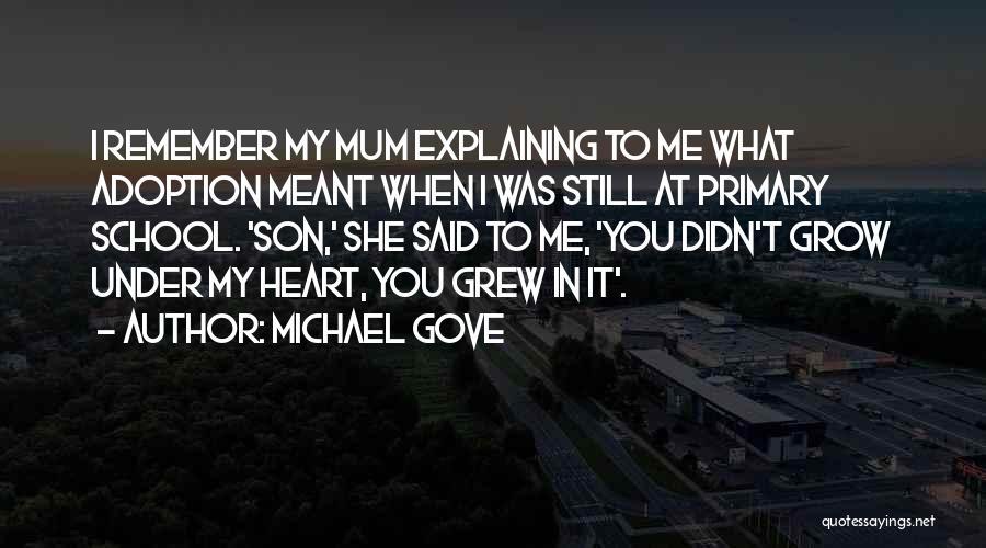 Michael Gove Quotes 790854