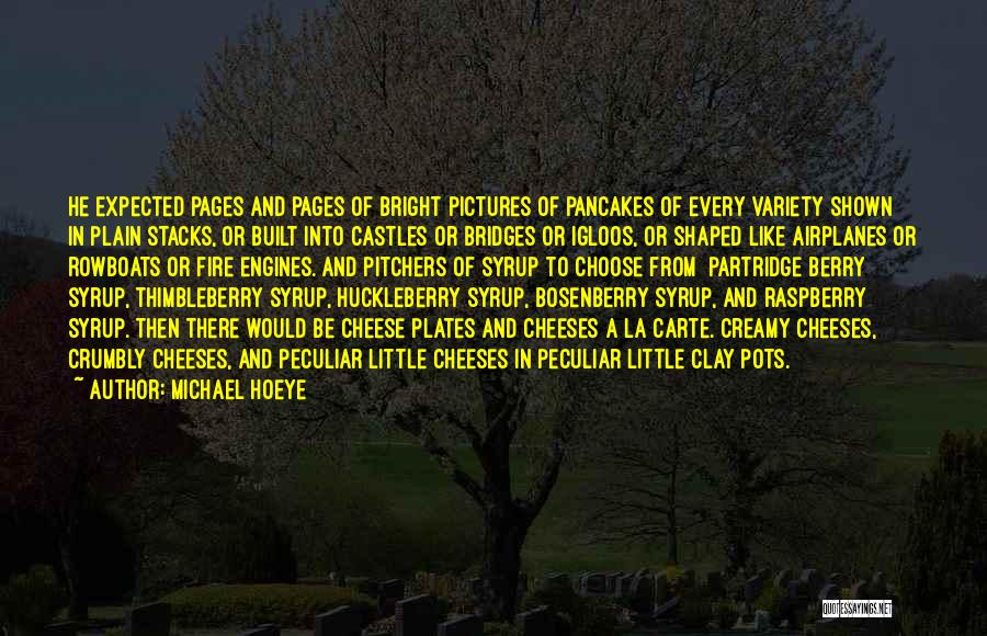 Michael Hoeye Quotes 701864