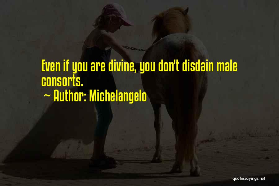 Michelangelo Quotes 594466