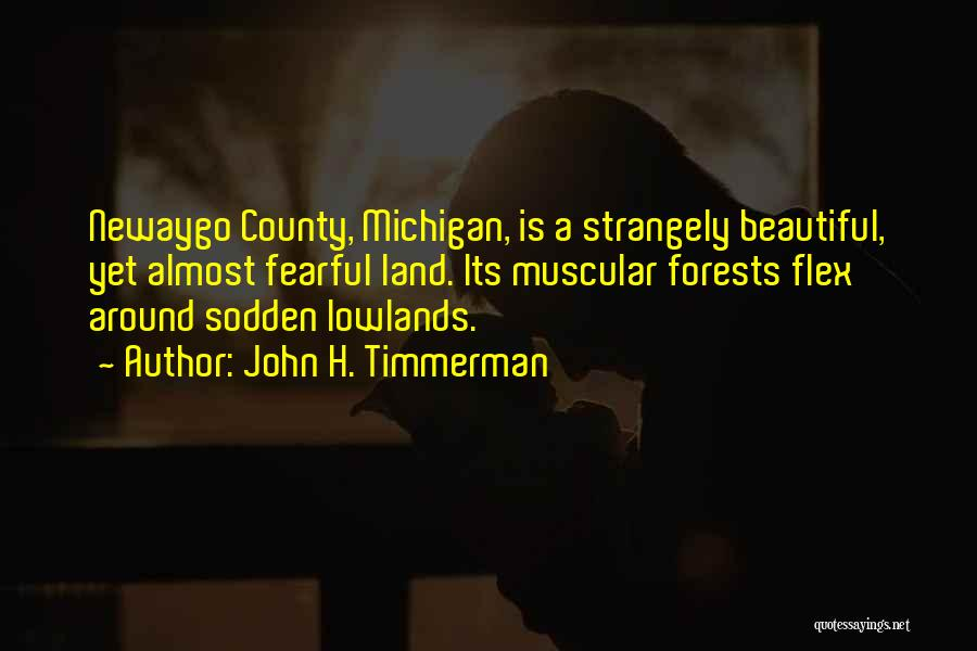 Michigan Quotes By John H. Timmerman