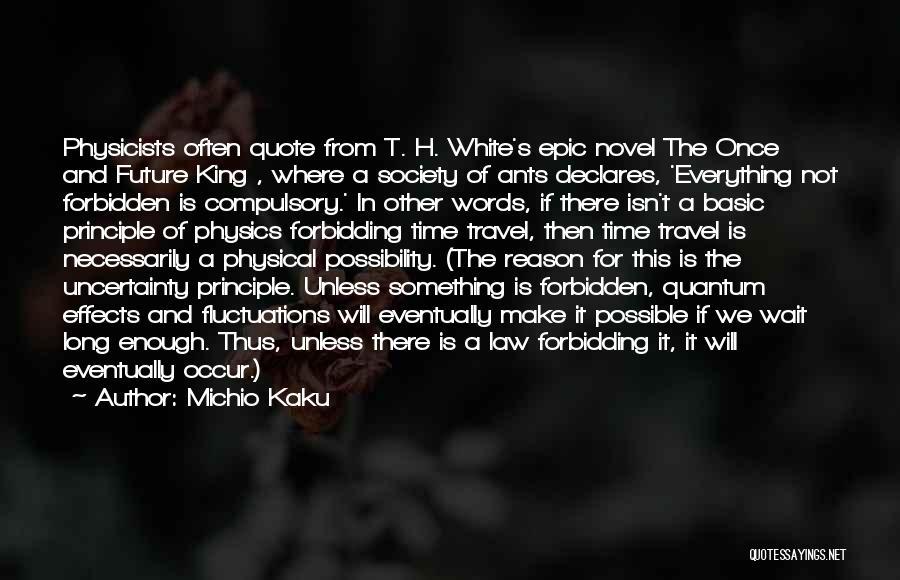Michio Kaku Physics Quotes By Michio Kaku