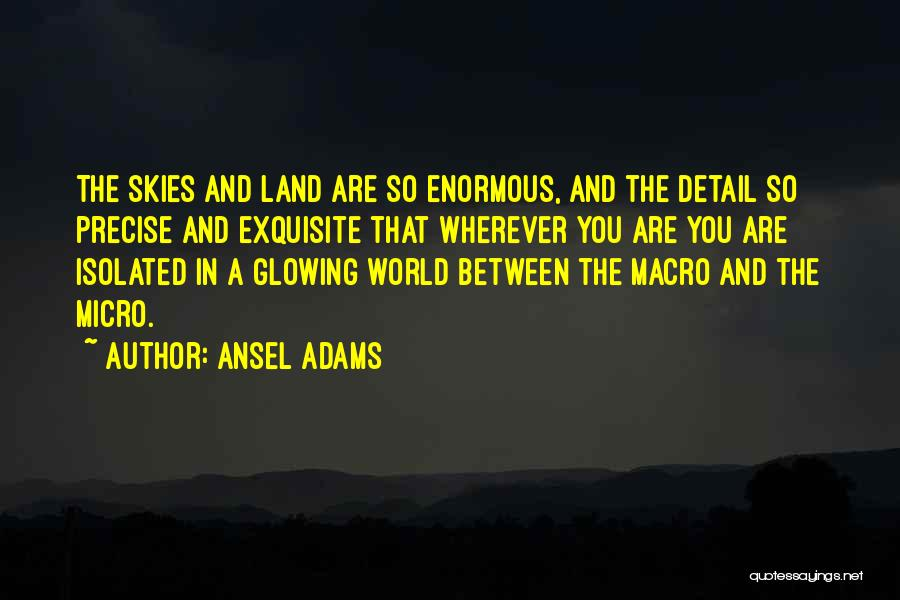 Micro World Quotes By Ansel Adams