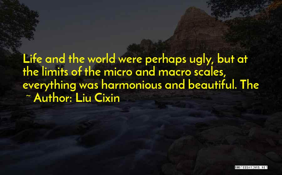 Micro World Quotes By Liu Cixin