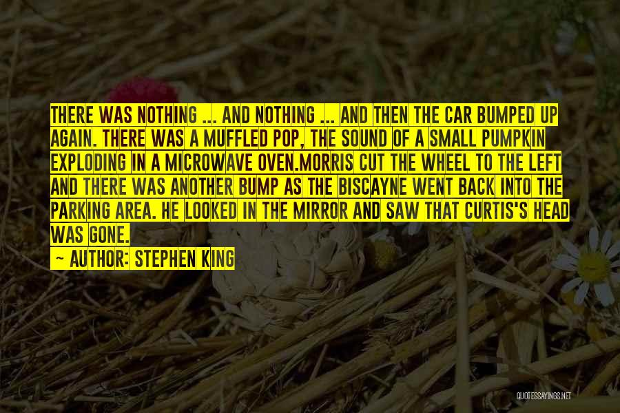 Microwave Oven Quotes By Stephen King