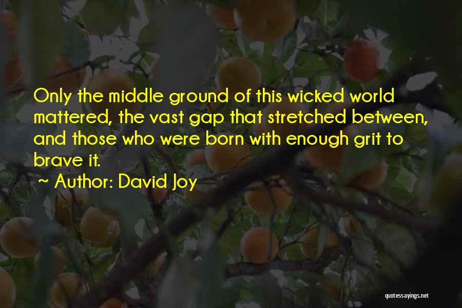 Middle Ground Quotes By David Joy