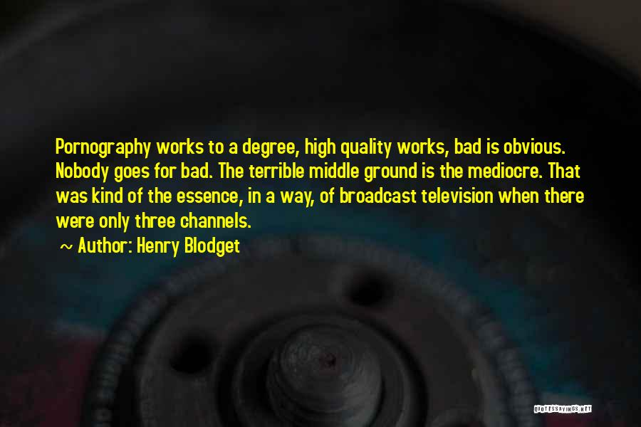 Middle Ground Quotes By Henry Blodget