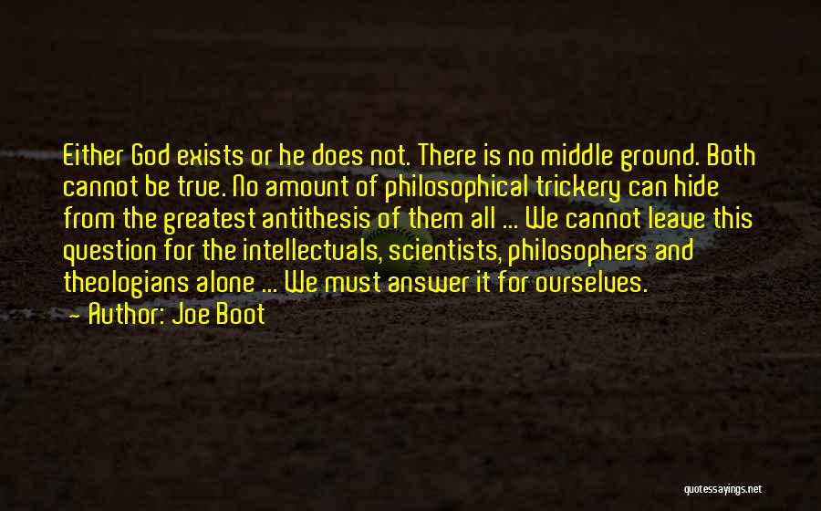 Middle Ground Quotes By Joe Boot