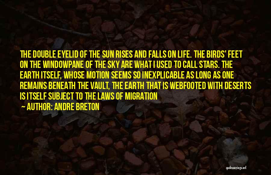 Migration Of Birds Quotes By Andre Breton