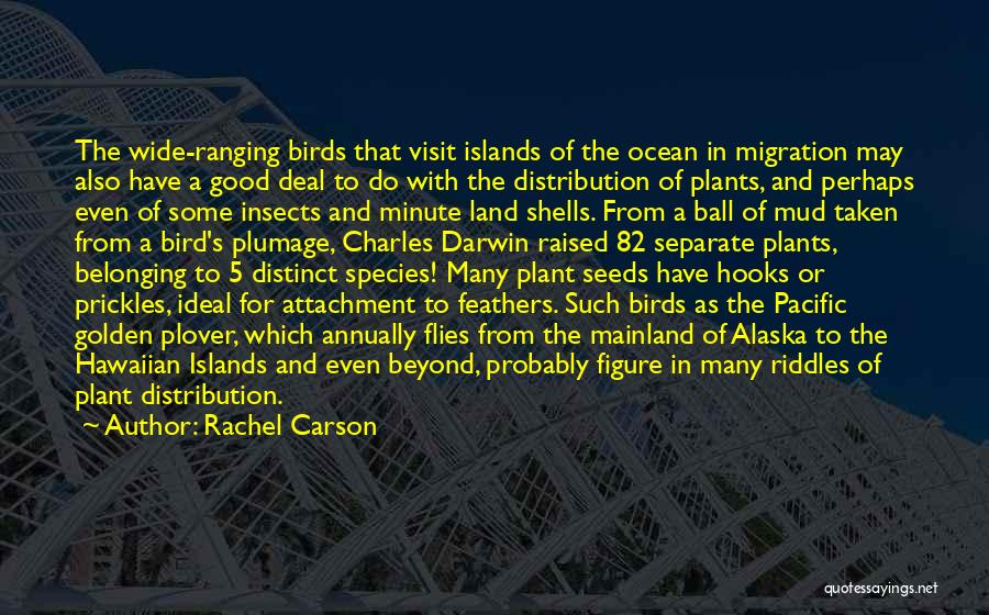 Migration Of Birds Quotes By Rachel Carson