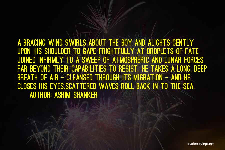 Migration Quotes By Ashim Shanker