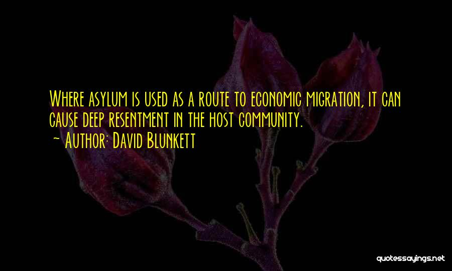 Migration Quotes By David Blunkett