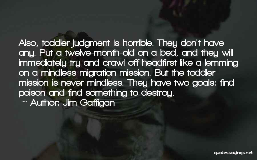 Migration Quotes By Jim Gaffigan