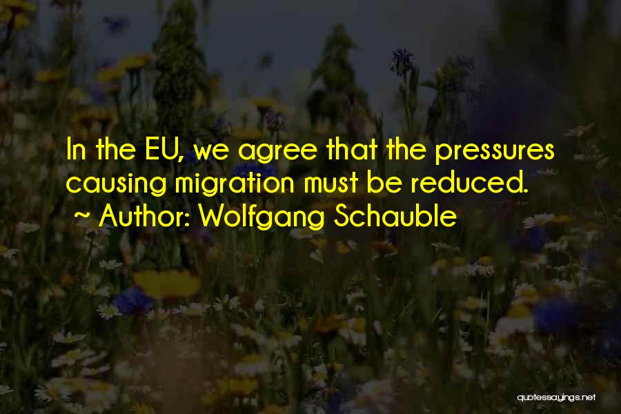 Migration Quotes By Wolfgang Schauble