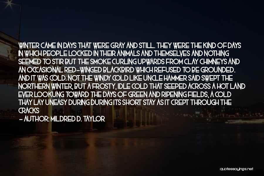 Mildred D. Taylor Quotes 2126987