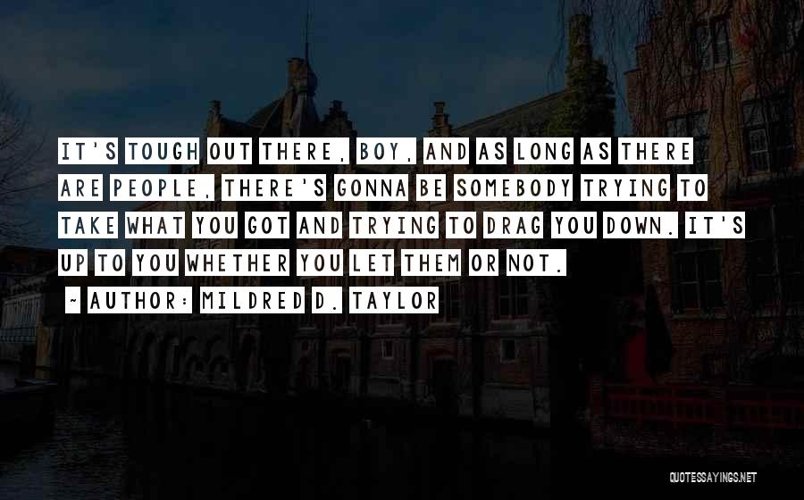 Mildred D. Taylor Quotes 79711