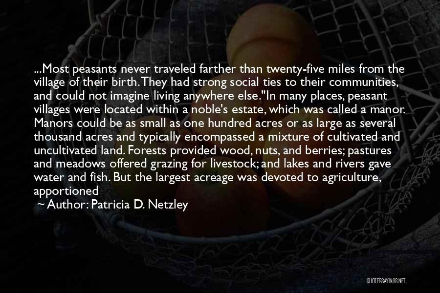 Miles Traveled Quotes By Patricia D. Netzley