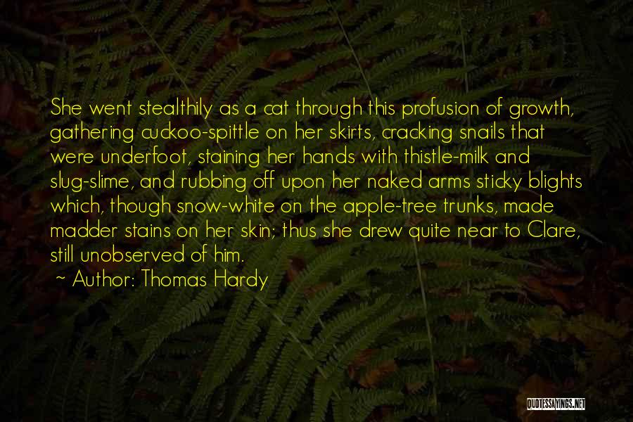 Milk Thistle Quotes By Thomas Hardy