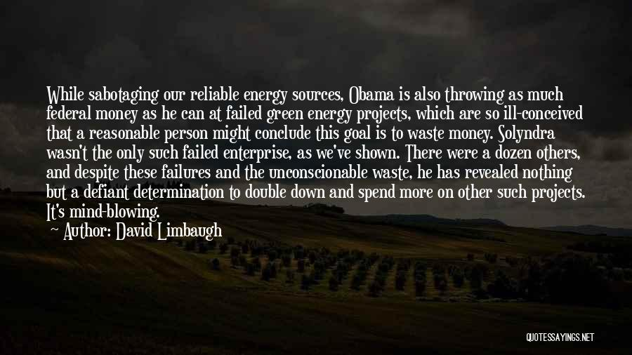 Mind And Money Quotes By David Limbaugh