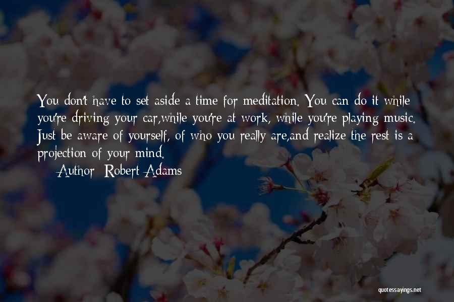 Mind And Music Quotes By Robert Adams
