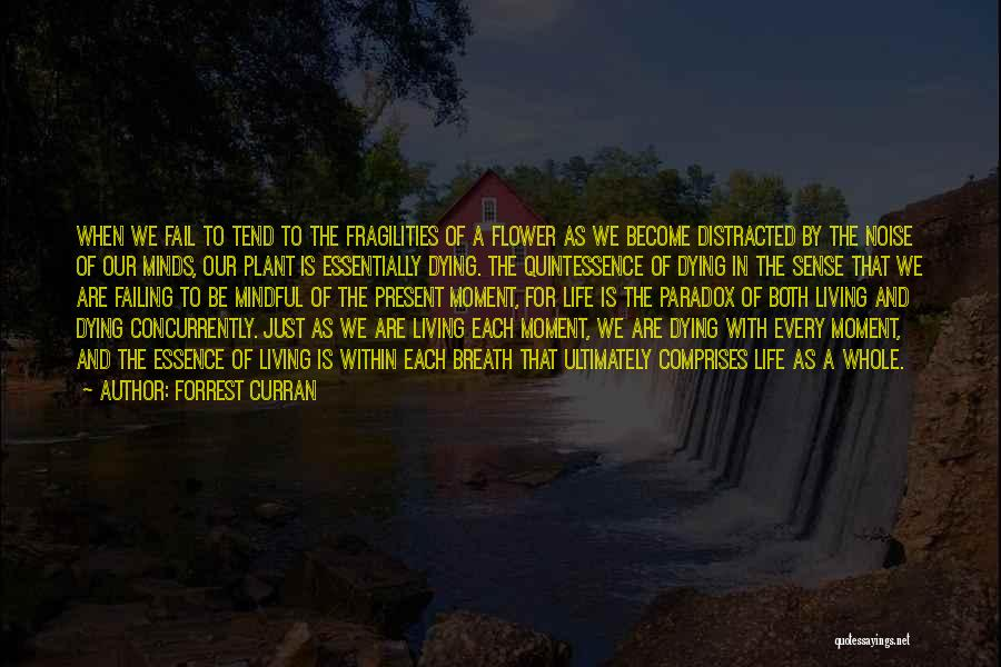 Mindful Living Quotes By Forrest Curran