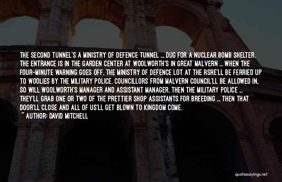 Minute Manager Quotes By David Mitchell