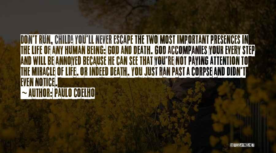 Miracle Of Life Quotes By Paulo Coelho