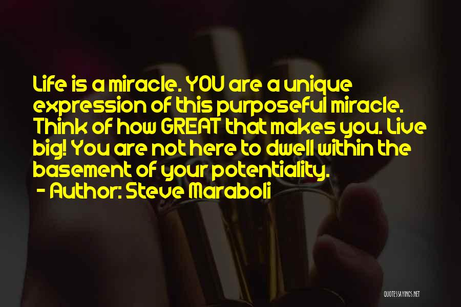 Miracle Of Life Quotes By Steve Maraboli
