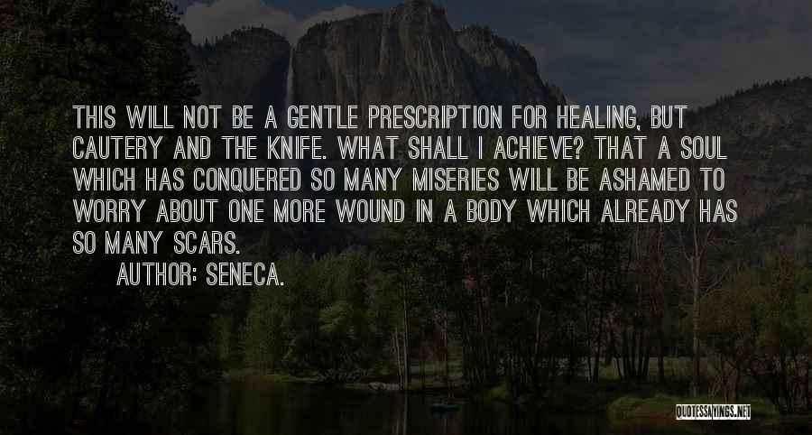Miseries Quotes By Seneca.